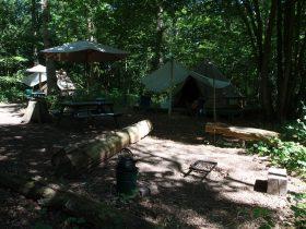 campsites in Sussex