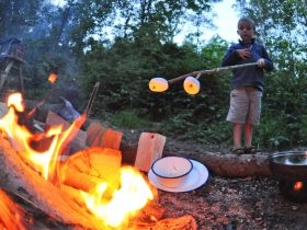 Campfires allowed at Sussex Campsite