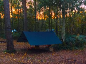 Wild camping in England