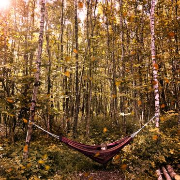 Autumn camping at Beech Estate Campsite