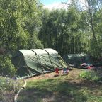 Woodland camping in Sussex