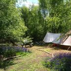 Sussex Glamping Bell Tent