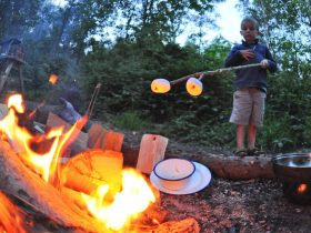 Best Camping Tips and Camping Advice