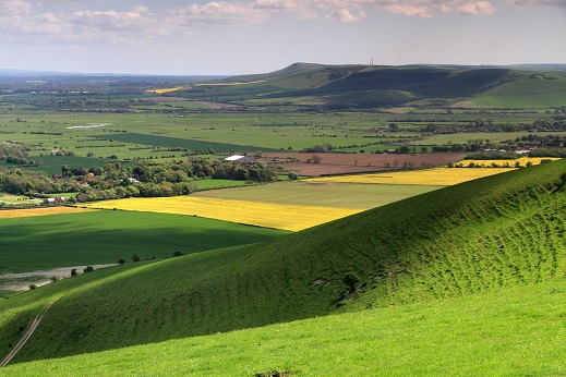 South Downs camping