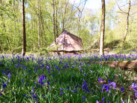 Glamping near Brighton