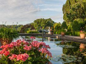 Gardens near Sussex Campsite
