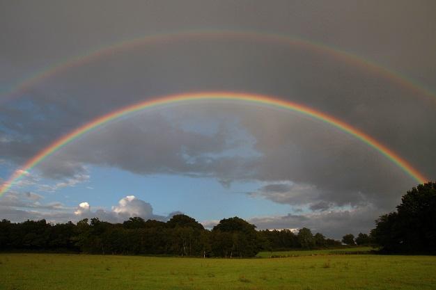 Rainbow over Wild Boar Wood