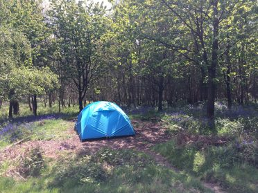 Group camping Sussex