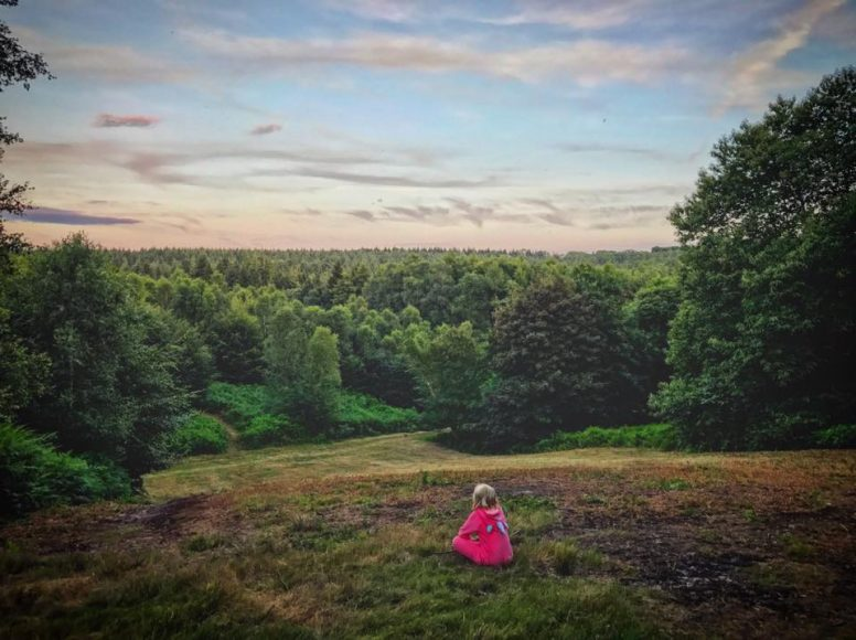 East Sussex Camping in the woods.