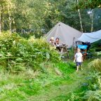 Glamping in Sussex Campsite