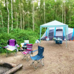 Tents on forest tent pitch at Beech Estate Campsite in Sussex