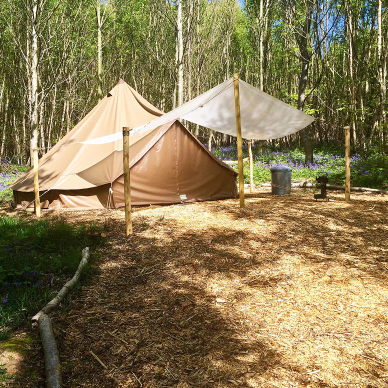 Woodland glamping in a bell tent at Beech Estate Campsite