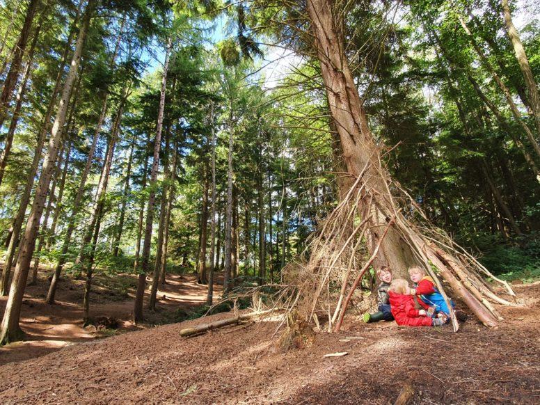 children enjoying the family campsite woodland