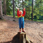 Camping with children in Sussex, Beech Estate Campsite