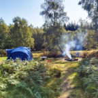 Secluded tent pitch at Sussex Campsite, Beech Estate