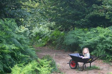 Family Friendly Camping in Sussex