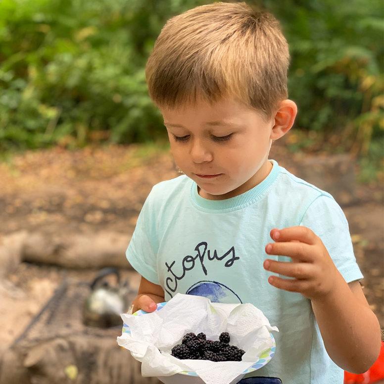 blackberry picking sussex