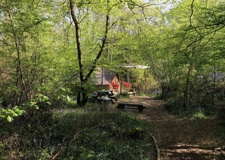 Last minute glamping bell tent