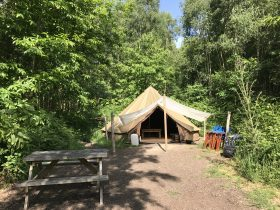 camping in the woods - Bell Tent