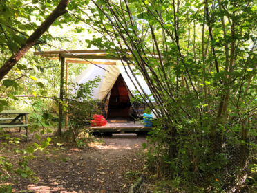 Glamping and camping in the woods