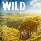 Wild Guide - South East Glamping site featured