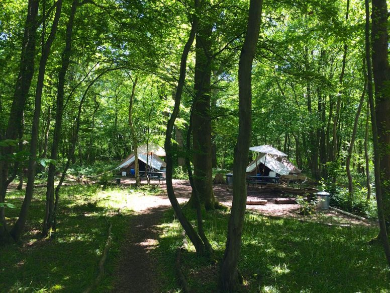 Neighbouring bell tents - great for group camping