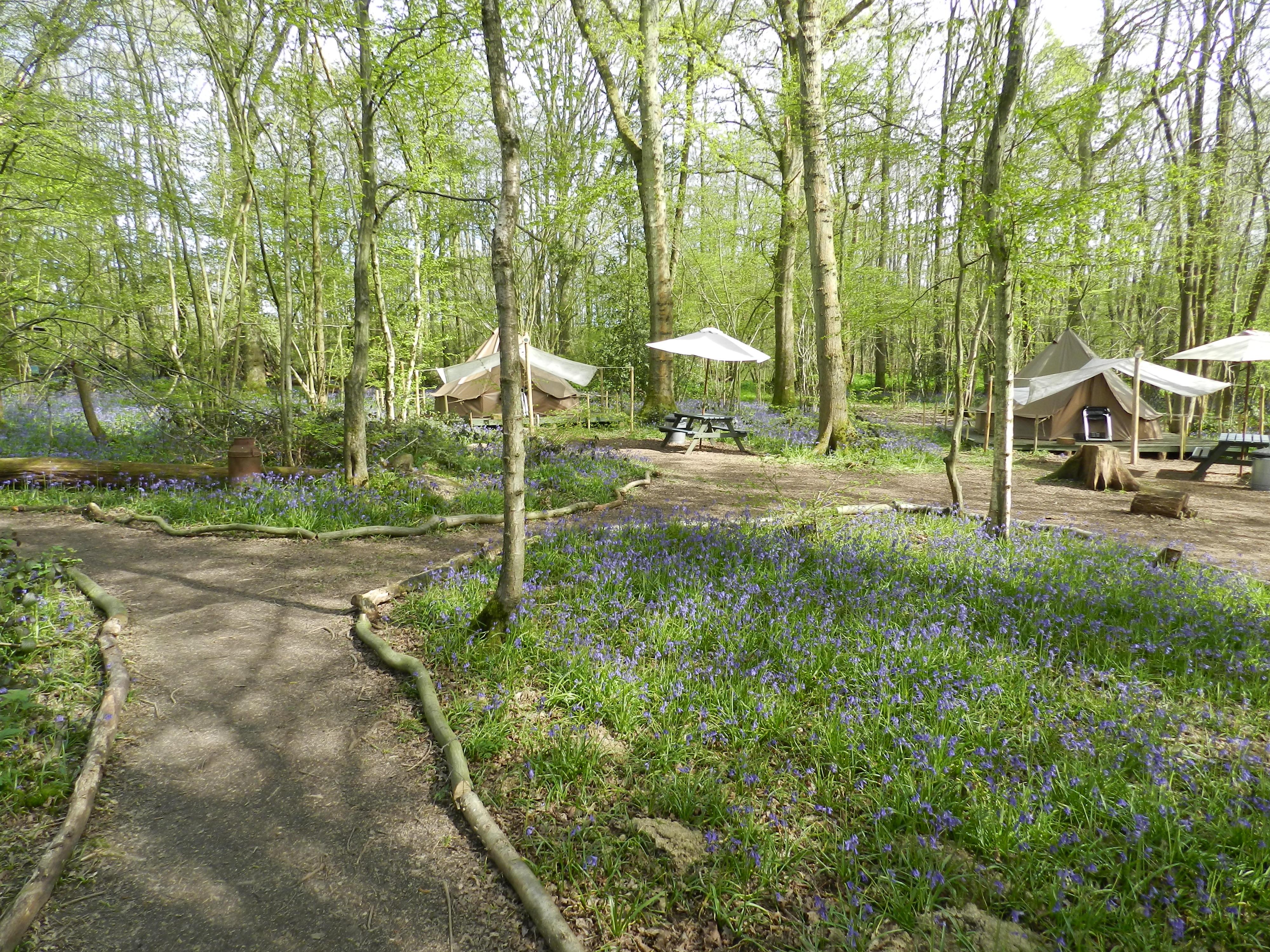 Campsite warden jobs. Alternative Camping Lifestyle?