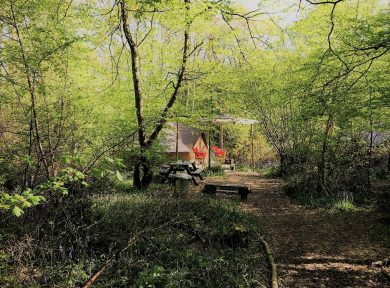 Glamping gift cards in Sussex