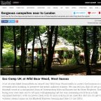 Campsites close to London - Wild Boar Wood Campsite