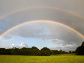 A rainbow over The Secret Campsite at Wild Boar Wood - captured on camera whilst camping in the rain