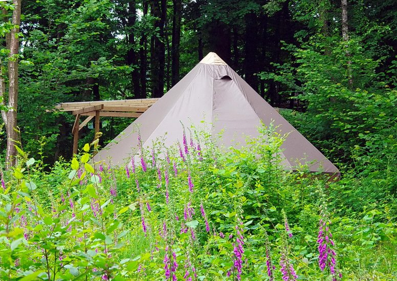 Sussex Glamping near London - Bell Tent - West Sussex Campsite