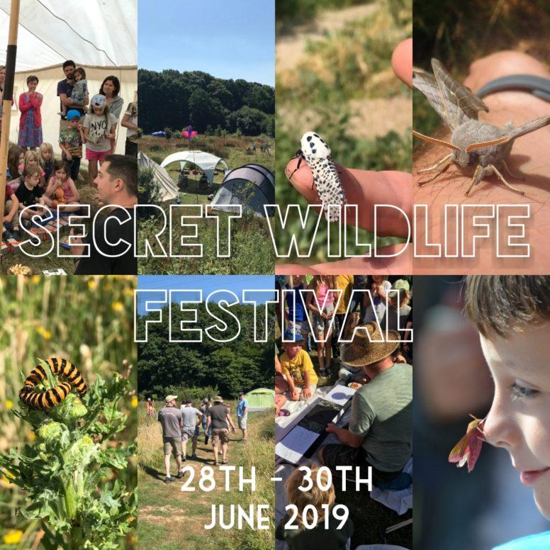 Wildlife Festival at the Secret campsite in Lewes