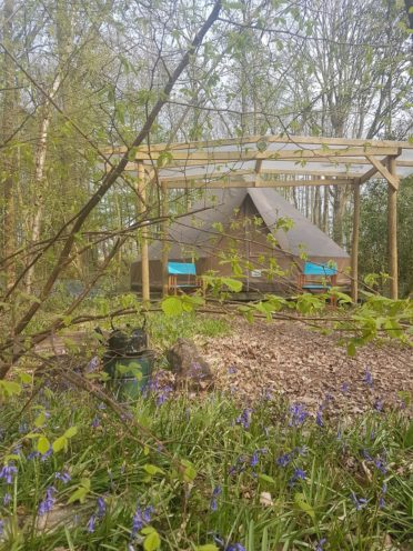 Family Glamping bell tent at Wild Boar Wood Campsite