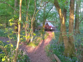 Glamping Bell Tent at Wild Boar Wood Campsite in Sussex