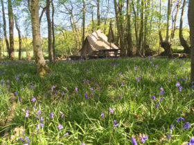 Easter bell tents at Wild Boar Wood