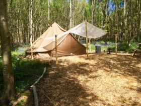 Glamping bell tent at Beech Estate Campsite