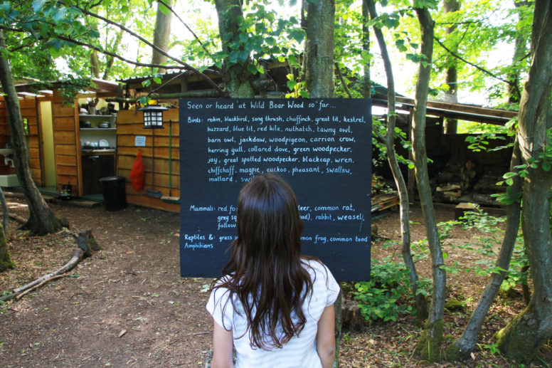 Wildlife spotting when glamping with grandparents at Wild Boar Wood