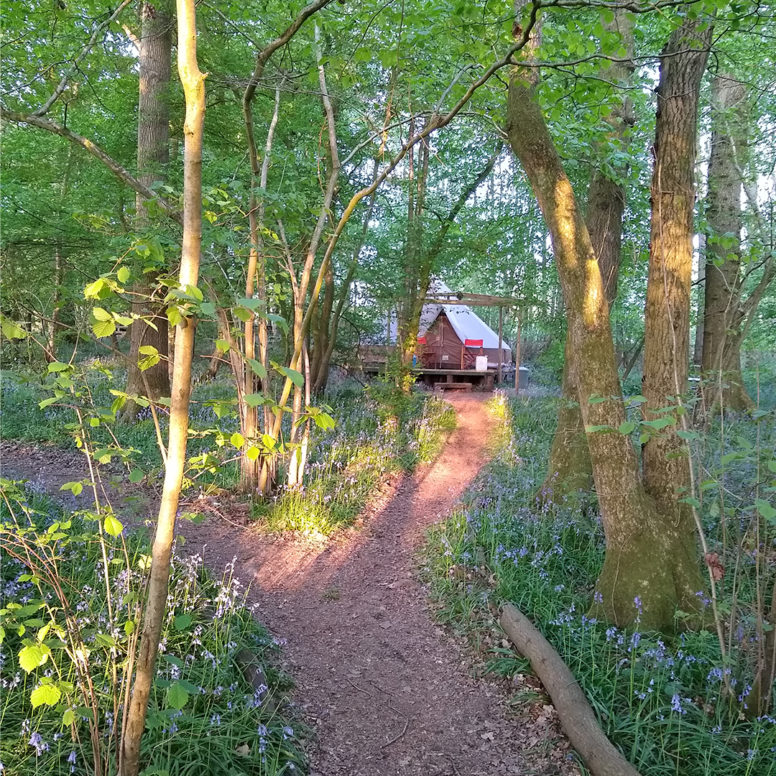adventure weekends - glamping at Wild Boar Wood
