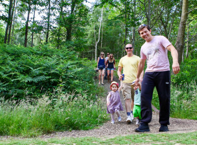 Family forest holidays in Sussex
