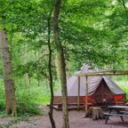 Bell tent in Sussex glamping site