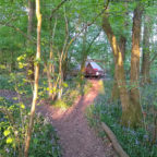 Bell tent in Sussex glampsite