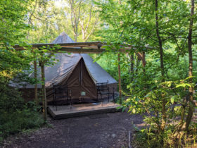 Glamping in September at Wild Boar Wood campsite in Sussex