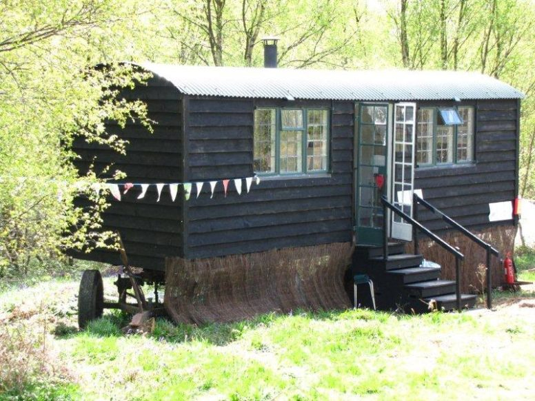 Work as a campsite warden in Sussex